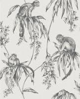 Graham and Brown Saimiri Monkey 106157 Wallpaper